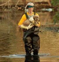 dog_rescuer.jpg