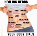 Healing Herbs Your Body Likes!