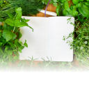 Herbal Hepatitis Recipe