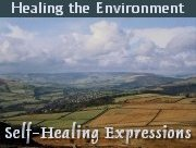 Healing the Environment: Healing the Planet Starts at Home