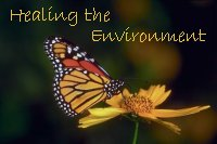 Healing the Environment: Saving the Planet Starts at Home