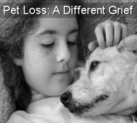 A Different Grief: Helping You and Your Children with Pet Loss
