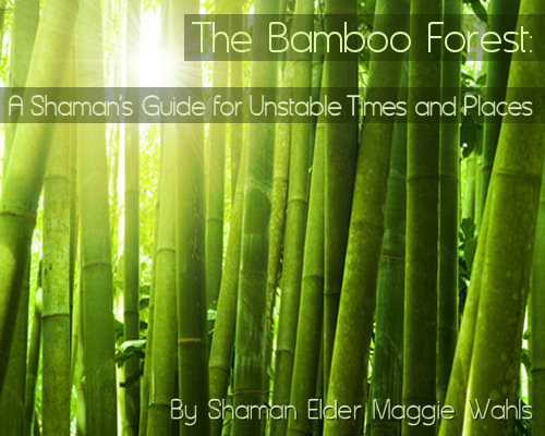 The Bamboo Forest: A Shaman's Guide for Unstable Times and Places